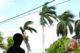 BMKG: Waspadai angin kencang dan gelombang tinggi