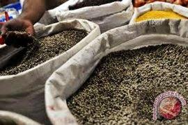 Petani Bengkulu berharap harga lada naik