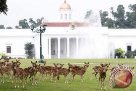 Istana Bogor terbuka untuk warga 10-14 September
