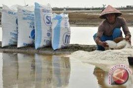 Bengkulu dorong pembangunan industri garam rakyat