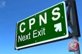 Silahkan Pemda ajukan formasi CPNS