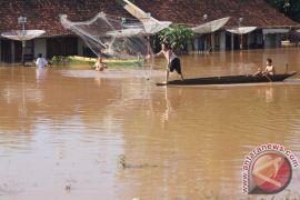 Ratusan rumah terendam air banjir di Tulangbawang