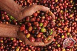 Perdagangan Desember Indonesia Catat Surplus Tertinggi