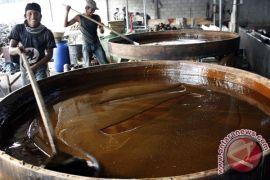 Gula aren andalan Banten tembus pasar ekspor