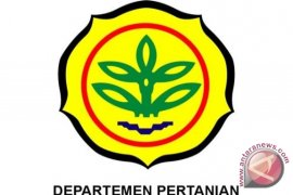 Perbaikan Irigasi Pertanian Butuh Rp50 Triliun