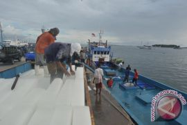 Harapan Indonesia Menjadi Negara Penghasil Ikan Terbesar