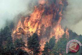 Empat tewas akibat gelombang panas di AS