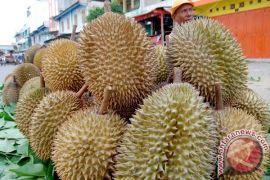 KAI sediakan 350 durian gratis di Stasiun Madiun