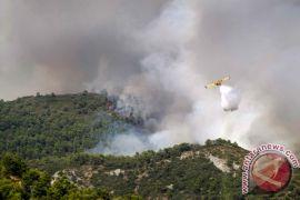 Kebakaran hutan landa Yunani
