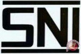 BSN Usulkan Standar Mobil Murah hadapi MEA 2015