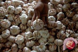 Penyelundupan bawang putih asal Malaysia berhasil digagalkan