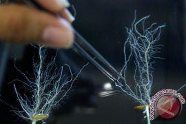 Regulator teknologi genetika Australia serukan reformasi industri