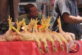 Harga daging ayam di Mukomuko Rp45.000/kilogram