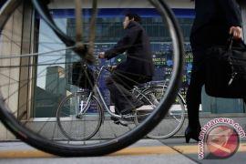 Nikkei perpanjang kenaikan untuk hari ke-14 beruntun