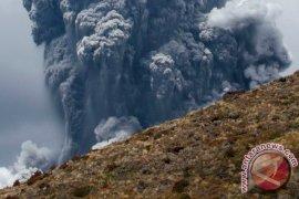 Gunung White Island di Selandia Baru meletus, beberapa cedera