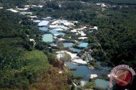 Bangka Belitung ingin libatkan warga dalam pelindungan hutan