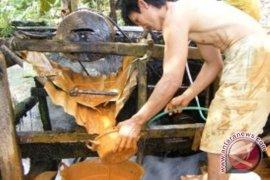 Wagub : tidak ada toleransi penambangan emas buru