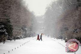 Tujuh tewas akibat salju longsor di Jepang