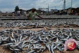 Bupati Bangka Barat Ajak Maksimalkan Pengolahan Ikan