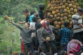 """Muara Teweh """"banjir"""" durian"""