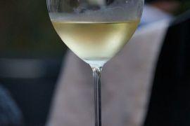 Peneliti ungkap bukti tertua pembuatan anggur
