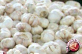 Disperindag Babel: Stok bawang putih 29 ton