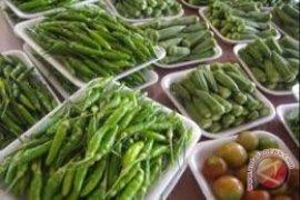 Polisi Sita Banyak Makanan Organik Palsu di Italia