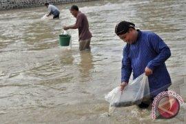 DKP Babel Salurkan 1.000 Juta Benih Ikan