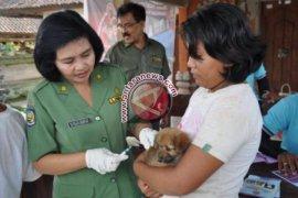 Karolin minta masyarakat vaksinasi hewan peliharaan