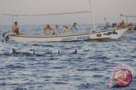 Nelayan wisata Pantai Lovina dulang rejeki Lebaran 2016
