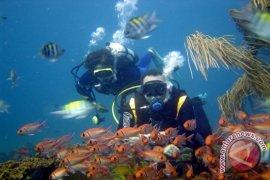 """""""Jubir"""" Batam menyelam di perairan Pulau Abang"""