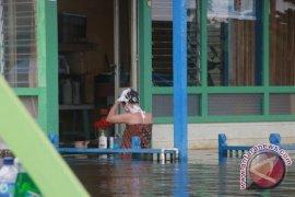 BNPB sebut 16.385 jiwa terdampak banjir di Kutai Kartanegara