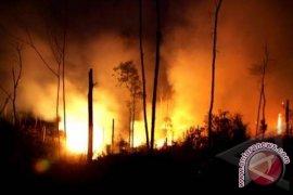 Polda tahan warga Malaysia tersangka pembakar hutan