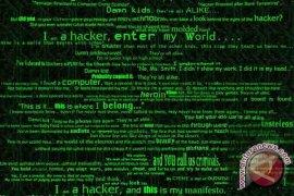 Serangan Siber Mematikan Listrik Merugikan AS
