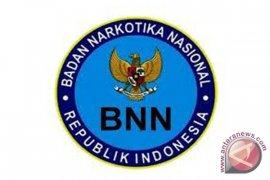 BNN ungkap 914 kasus narkoba sepanjang 2018