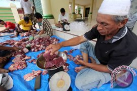 PT. Batutua sembelih hewan kurban peringati Idul Adha