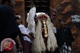 Puluhan Pecalang Amankan Tradisi Ngerebong