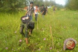 Aktivis lingkungan tanam mangrove peringati hari bumi