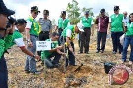 Menhut Harapkan Penanaman Pohon 2014 Capai 2 Miliar