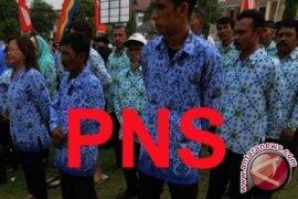 Plt Bupati: PNS jadi tim sukses kena sanksi