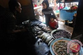 Pemkot Banda Aceh Relokasi Pedagang Ikan