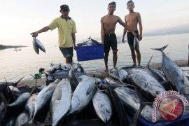 Mesir-Yordania Lirik ikan Tuna Gorontalo