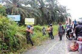 Warga Patok Lahan PTPN XIII Long Pinang