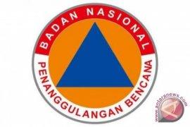 Pelantikan kepala BNPB ditunda, mengapa?