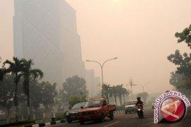 Kabut asap Riau meluas