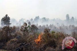 BMKG deteksi 46 titik panas di Riau