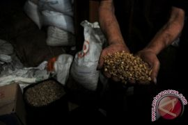 Delegasi Forum Perdagangan Internasional Mesir cicipi kopi Indonesia
