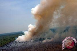 Menhut takut cagar biosfer kembali terbakar
