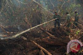 Kebakaran 40 hektare di Dumai berhasil dikendalikan