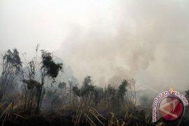 Kebakaran di Pulau Maya Terus Meluas